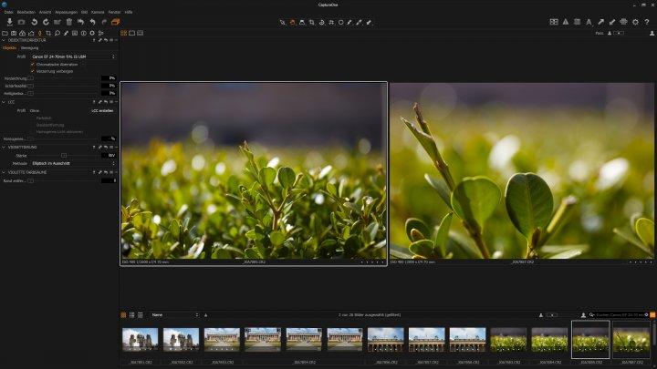 Testbild Canon EF 24-70 mm f/4L IS USM | Canon EOS 5Ds R | ohne (links) und mit (rechts) aktiviertem Makro-Modus
