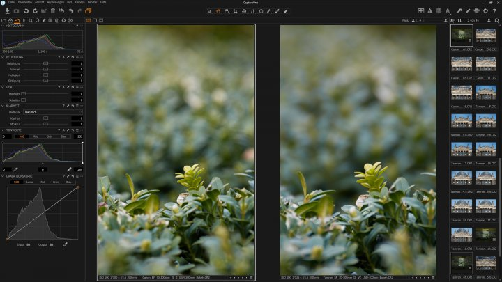 Canon EF 70-300 mm f/4-5.6 IS II USM: Bokeh im Vergleich zum Tamron SP 70-300 mm DI VC USD (rechts)