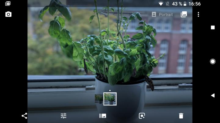 Wenn man den Portraitmodus von Google Pixel 2 oder 2 XL nutzt, steht der künstliche Bokeh-Effekt zur Verfügung