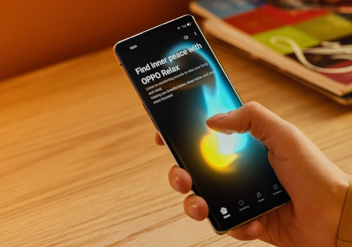 Das OLED-Display des Oppo Reno4 Pro 5G überzeugt mit satten Farben, scharfen Kontrasten und guter Helligkeit