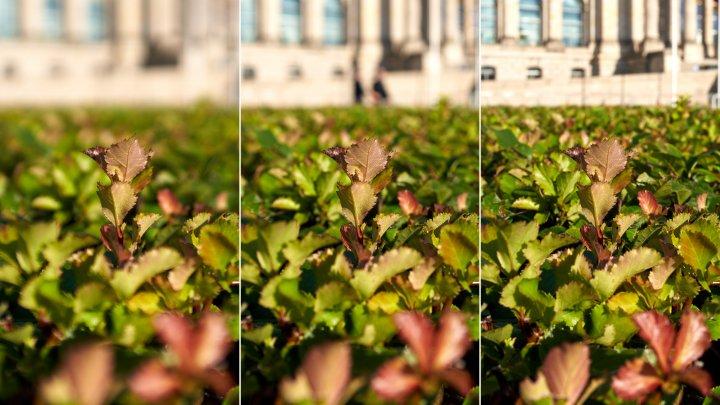 Testbild Sigma 24 mm f/2 DG DN Contemporary + Sony Alpha 7R IV   Bokeh bei f/2, f/4 und f/8 im Vergleich (v.l.n.r.)