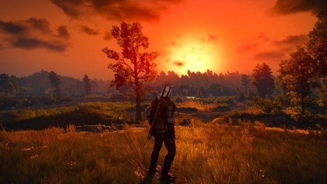Benchmark 'The Witcher 3'